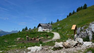 Dolomites Alta Via Highlights