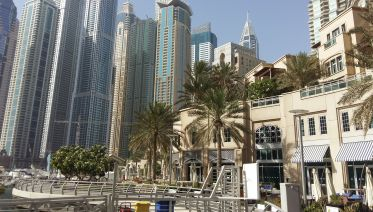 Dubai City Tour & Dhow Cruise Dinner