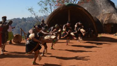 Durban City Tour  And Phezulu