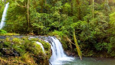 East Coast Islands and Rainforest