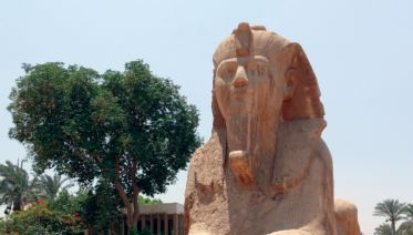 Elegance of the Nile