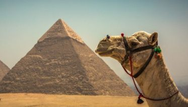 Essential Egypt-Comfort