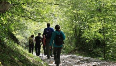 Exclusive Group (min 10 Pax): Adventure In Croatia: Hike, Eat & Enjoy