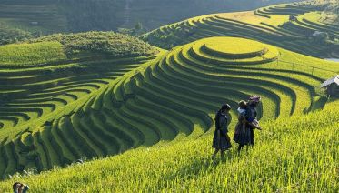 Explore Hanoi, Trek Sapa and Cruise on Halong Bay (7-Day)