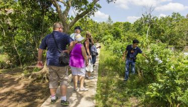 Explore Mekong Delta - A Homestay Experience