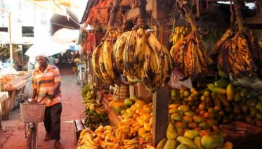 Exploring Handmade Zanzibar