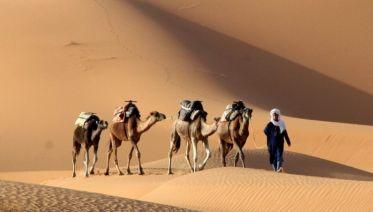 Fantastic Morocco