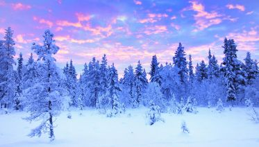 Finnish Lapland: 9-Day Escape In The  Winterland