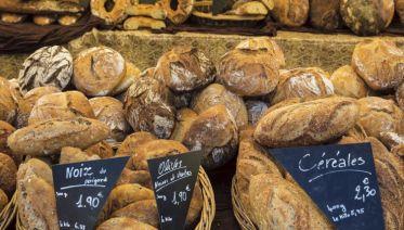 Flavours of Bordeaux