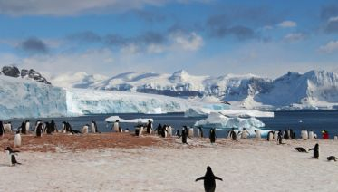 Fly & Cruise: Antarctica-in-Depth (Extended Peninsula Voyage)(Cruise South)