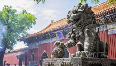 Forbidden City, Jinshan Park, Hutongs And Lama Temple