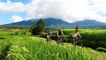 Mount Batur Tours