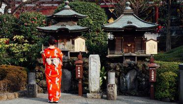 Fourteen Day Tour of Japan