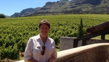 Full Day Guided Tour Exploring Cape's Winelands