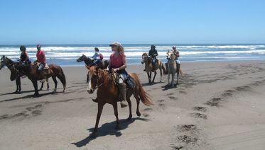 Full-Day Private Beach Horseback & Sand Dunes