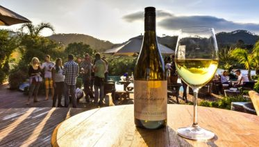 Full Day Wine Tour From Franschhoek