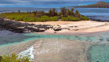Galapagos at a Glance: Southern Islands (Grand Daphne)