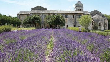 Gems of the Seine & South of France
