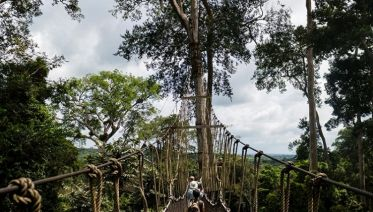 Ghana's Wildlife, Tribes and Castles