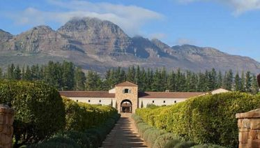 Gourmet Food And Wine Tour In Stellenbosch