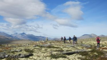 Guided Walking in Venabu, Norway
