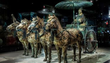 Half-Day Private Tour of the Terracotta Warriors Museum