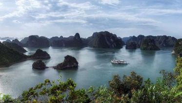 Halong Bay Cruise full Day From Tuan Chau