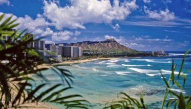 Hawaii Hopper Plus