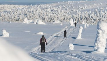 Headwater - Cross-Country Skiing in Lapland