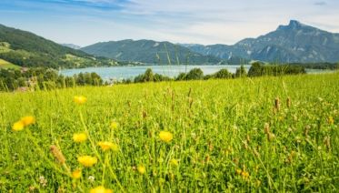 Headwater - Self-Guided Walking in Austria's Lake District