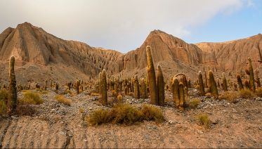 Heart of the North: Salta and Jujuy
