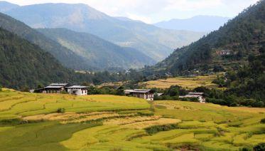 Hello Bhutan Tour