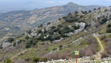Hidden Valleys of Cordoba Self-Guided Walk