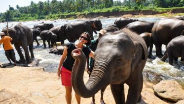 Highlights of Sri Lanka 7D/6N