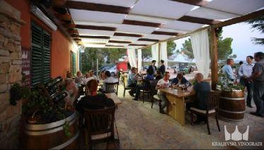 Hinterland of Zadar - Wine Tasting