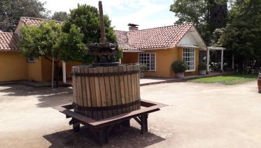 Horse & Wine Tour: Emiliana & Loma Larga Vineyards