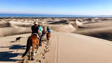 Horseback Ride on Beach & Sand Dunes + Viña del Mar Tour