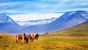 Iceland On A Budget