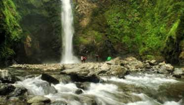 Ifugao & Donsol Discovery 10D/9N