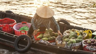 In-depth Mekong Delta, Private Tour