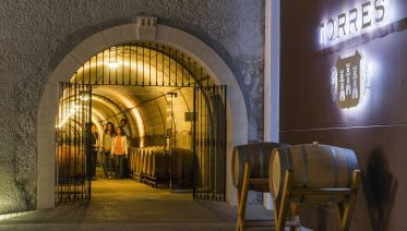 Indulge In The Best Of Catalonian Wine And Cava