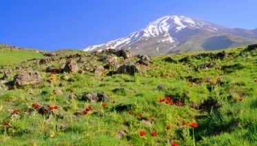 Iran: Ancient Cities And Damavand