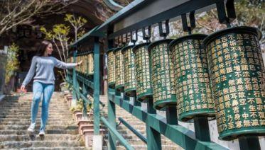 Kyoto Tours