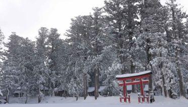 Japan Winter Explorer