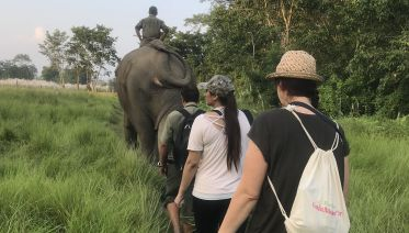 Journey to the Birthplace of the Buddha & Jungle Safari