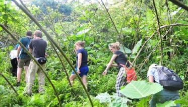 Jungle Life In Ba Be National Park 4 Days 3 Nights