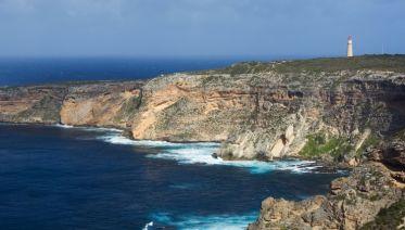 Kangaroo Island Adventure