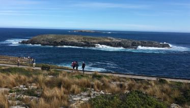 Kangaroo Island with Barossa Valley for Solo Travellers
