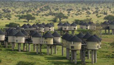 Kenya Horizon
