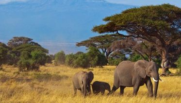 Kenya: Off The Beaten Track